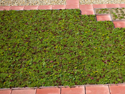 Sustainable & Green Roof Products